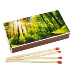 Zápalky Landscape dlouhé 9,5cm, 50ks-Dlouhé zápalky pro domácnost vhodné na zapalování svíček, krbů a grilů. Krabička 50 ks zápalek. Délka 9,5 cm.